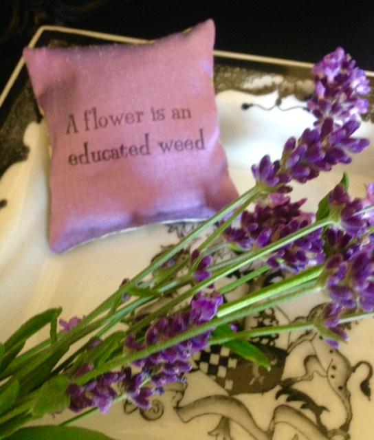 Lavender……