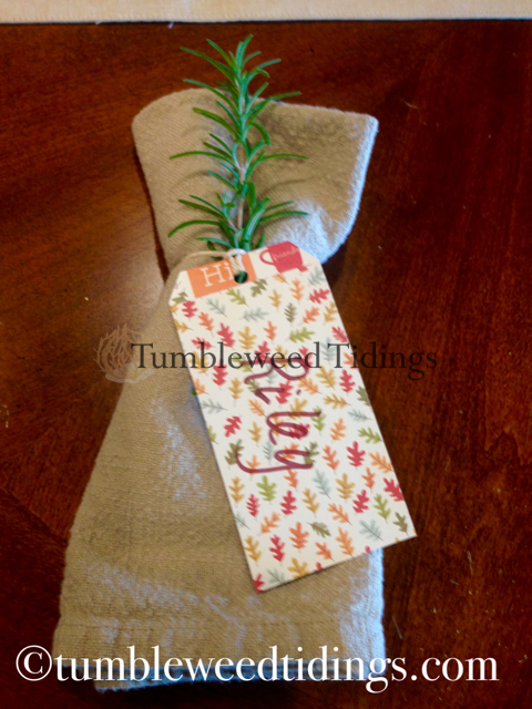 Easy Thanksgiving Napkin Ring/Placecard Holder…